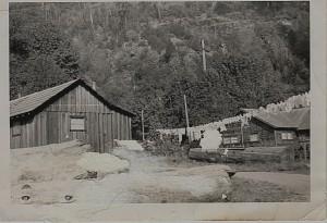 Sitkum circa 1950